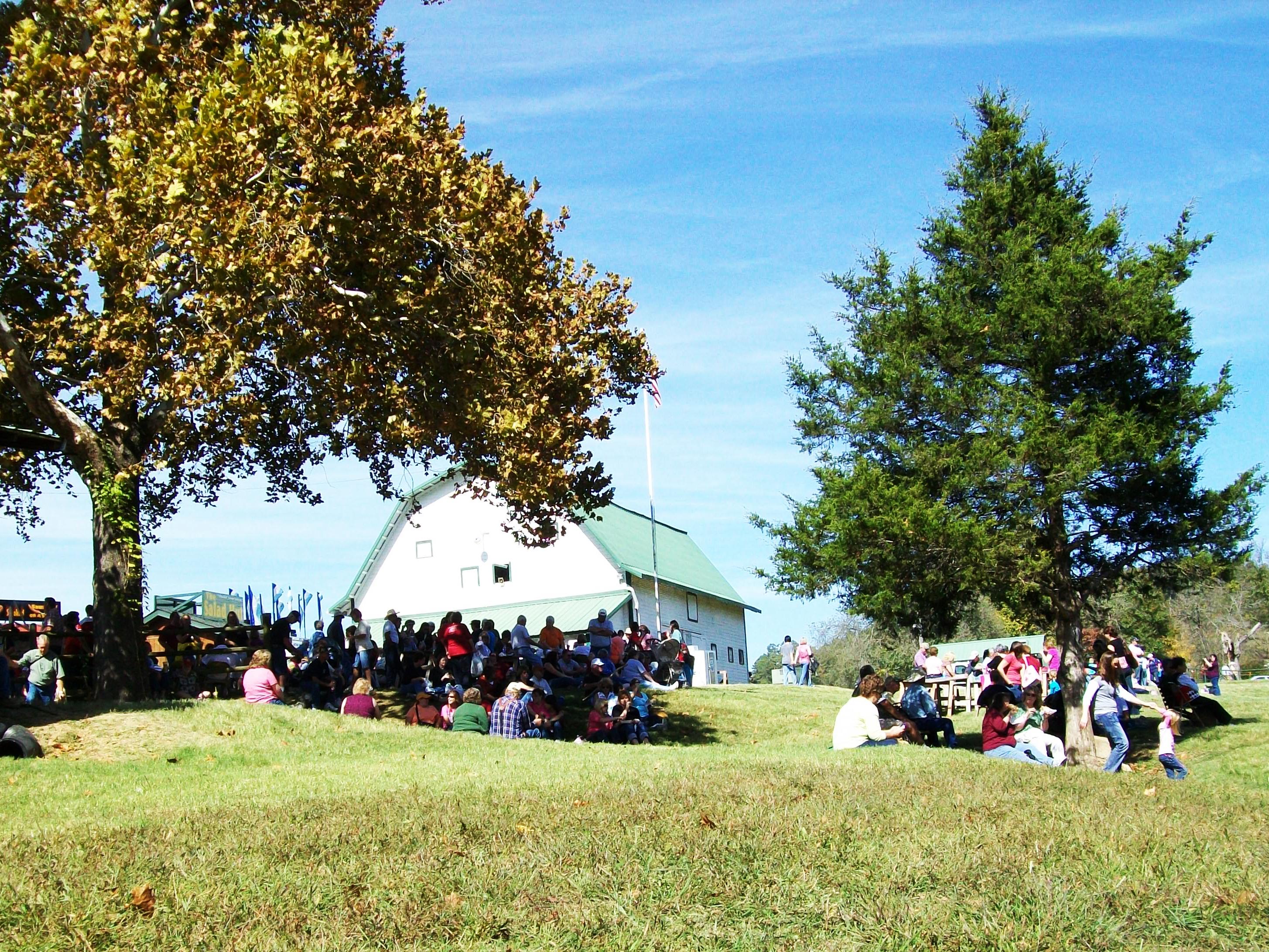 Sit where you want War Eagle Craft Fair