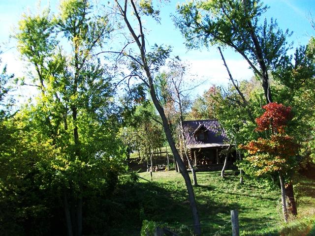War Eagle cabin